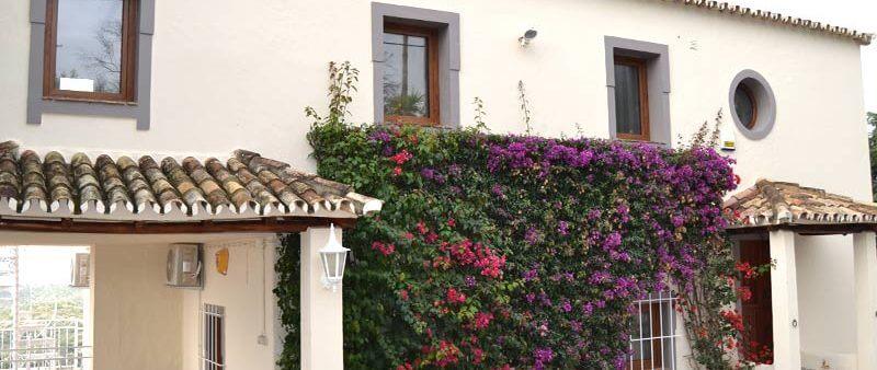 Maison avec menuiserie de fenêtres et portes extérieures en PVC imitation bois chêne dorée